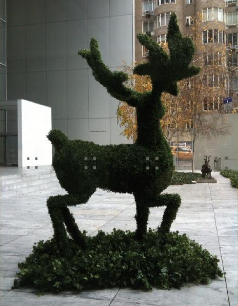 topiary burton